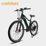 off-Road Electric Bike for Travel, Outing, Family