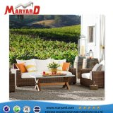 Wicker Rattan Sofa Bed Rattan Sofa Furniture with Ottoman