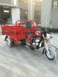 Three Wheel Motorcycle Tricycle with 250cc