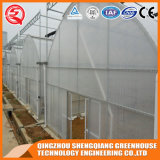 China Manufacturer Waterproof Transparent Greenhouse