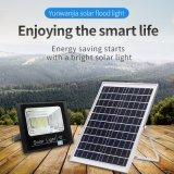 High Brightness Integrated Stand Alone Motion Sensor Pathway Street LED Outdoor Solar Light