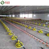 Best Quality Automatic Chicken House Equipment Poultry Farm Feeders and Drinkers