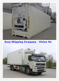 Consolidate Reefer Container/Cabinet Freezer/Frozen Container Shipping Container Services
