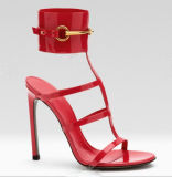 Newest Design Women Sandal (HS13-131)