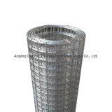 China Wholesale Amazon Ebay Hot Galvanized Welded Wire Mesh Price
