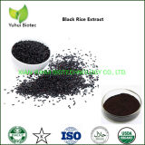 Water Solule Anthocyanidins Black Rice Extract Powder