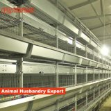 Best Price Automatic Poultry Farm Equipment Layer Chicken Battery Cage for Sale