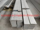 304 ASTM Stainless Steel Flat Bar Building Material