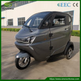 EEC Coc Ce 3 Wheel Mini Electric Vehicles for Adults