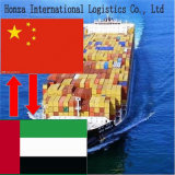 Sea Freight From Shanghai/Tianjin/Guangzhou to United Arab Emirates/Sharjah
