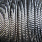 316 316L Stainless Steel Wire Ropes with Best Price