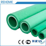 Germany Standard Plastic Products DN20/DN25/DN32 Water Pipe Plastic Tube PPR Pipe