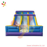Inflatable Slide (LY-SL246)
