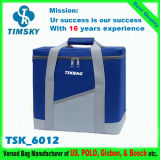 Insulated Cooler Bag for Outdoor, Picnic, Travel, Camping