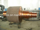 Forged Shaft/Forging Shaft