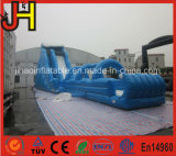Giant Inflatable Water Slide, Inflatable Slide, Giant Slide Inflatable