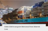 Maersk/Msc Ocean Shipping Line Service to Europe