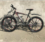 Mountain Bike, Adult Bicycle for Sales