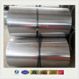Nickel Titanium or 316 Stainless Steel Coil