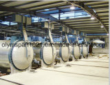 Fly Ash AAC Block Brick Autoclave in India