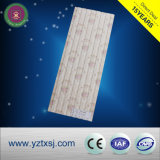 Hot Sale WPC Wall Panel for Exterior Wood Plastic Wall