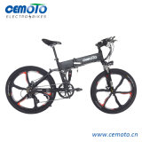 Folding MTB Electric Bike with Integrated Rims