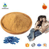 Factory Supply Oyster Extract Powder and High Purity Oyster Peptide Capsule