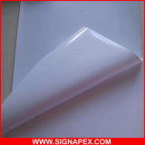 High Glossy Solvent Carbody Advertising PVC Printable Self Adhesive Vinyl