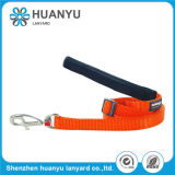 Custom Logo Retractable Nylon Dog Walking Leash
