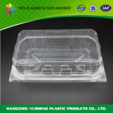 Blister Salad & Fruit Packing Container