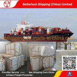 Shipping Freight Logistics Services from Shunde China to New Zealand Auckland Furniture