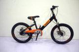 Saft Carbon Steel Frame Single Speed Bicycle with Wanda Tyre Roading Bike