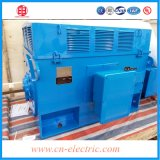 1kv 16kw High Voltage Three Phase Induction AC Motor Price
