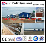 Best Egg Production Performance Chicken Layer Battery Cage