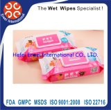 Fast Delivery Competitive Price High Quality Pet Wet Wipe Manufacturer From China