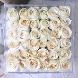 Large Acrylic 36PCS Fresh Rose Flower Box Good Wholesale Prices