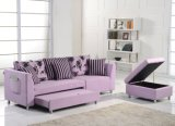 Sofa Set with Storage and Pull out Bed