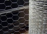 Galvanized, Hot-DIP Zinc Plated, PVC Coated Hexagonal Wire Netting