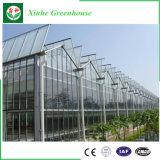 Turn-Key Greenhouse Xinhe Greenhouse
