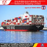 Container Shipping Services to Tokyo Japan Ocean Sea Freight Agent from China Guangzhou Shenzhen