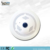 Panoramic Smart Camera for Fire Detection and Alarm