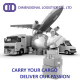 International Freight Forwarding/Air Logistics From China to Brisbane/Austalia