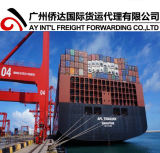 Ocean Freight Container Shipping to Itajai