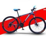 Cheap Price Downhill Mountain Bik, Disc Brake Bicycle Mountain Bike