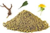 China Pure 100% Natural Dandelion Plant /Flower/Herb Leaf Extract