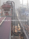 Vertical Sidewall Belt Conveyor (DJS)