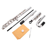 Wholesale Double Heads Flute for Beginner /C Foot