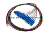 12fiber Singlemode Sc/Upc Optical Fiber Pigtail 0.9mm