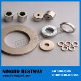 Strong DC Neodymium Magnet Powder Motor Price