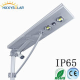 40W All in One Outdoor LED Graden Lamp with Solar Panel